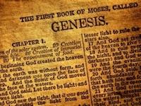 Uma confissão reformada sobre a criação