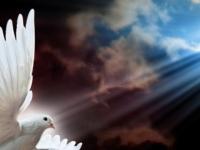 Dons e Espiritualidade